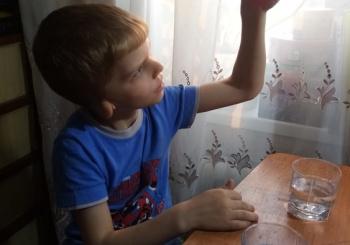 """Подготовка проекта """"Что мы знаем о воде?"""" к  конкурсу """"Вертикаль-ДВ"""""""
