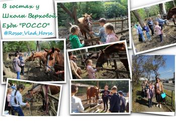 В гостях у Школы верховой езды «РОССО»